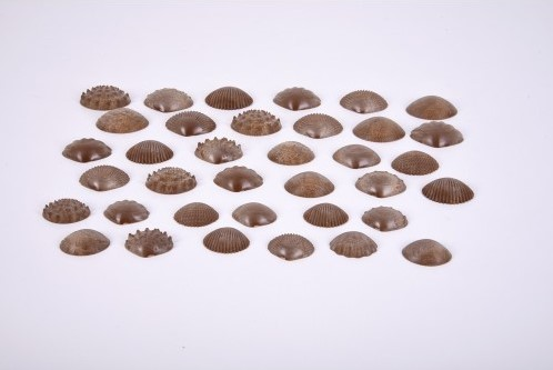 TickiT Eco Friendly Tactile Shells