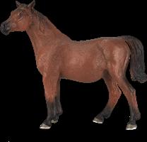 Mojo Horses